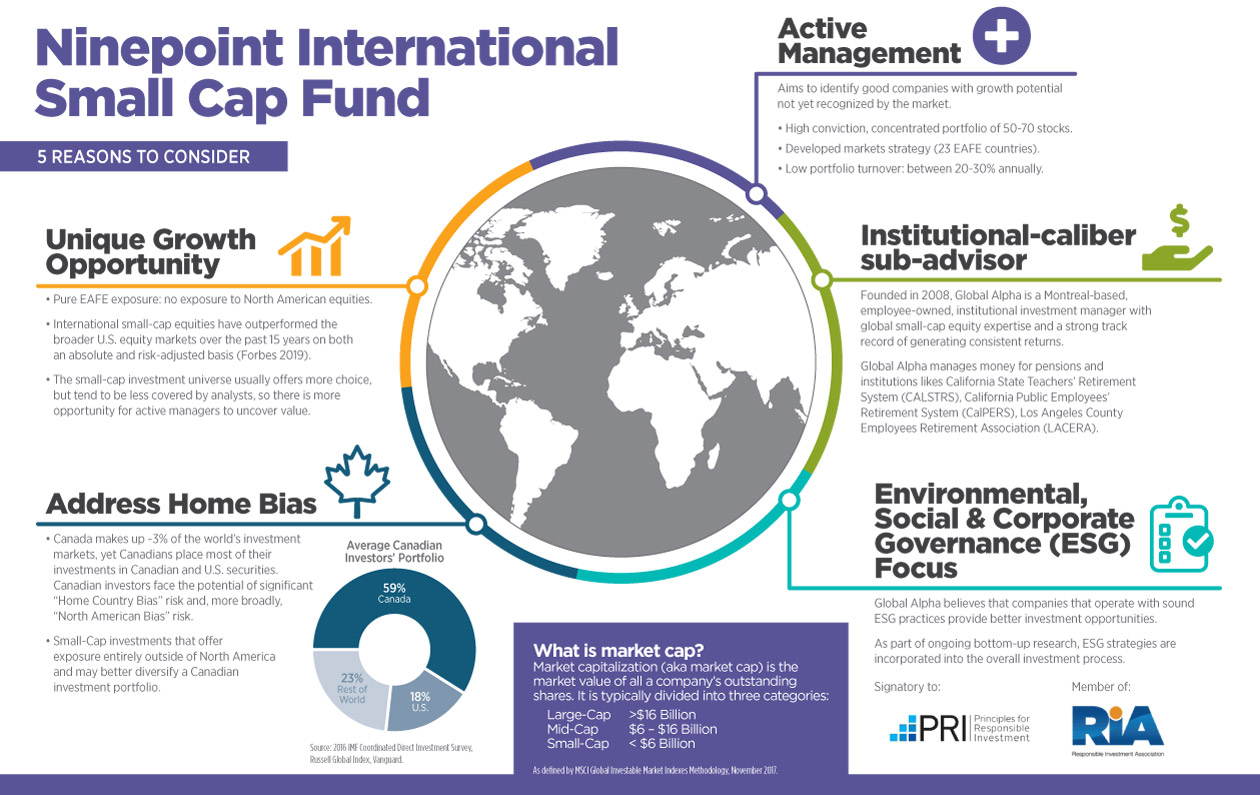 Ninepoint International Small Cap Fund